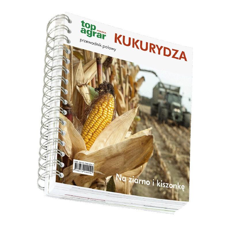 Kukurydza - przewodnik polowy