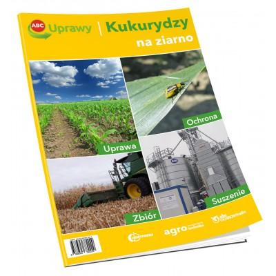 ABC uprawy kukurydzy na ziarno