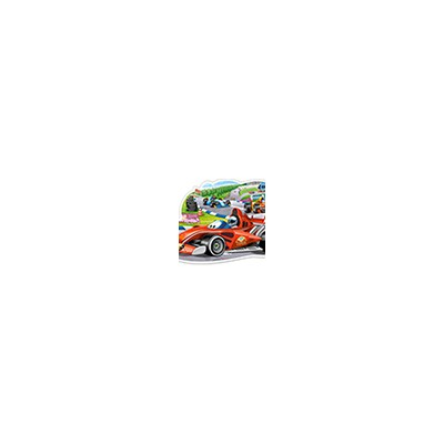 Puzzle Castorland B-120208...