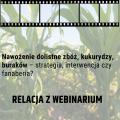Nawożenie dolistne zbóż, kukurydzy, buraków – strategia, interwencja czy fanaberia? Ralacja z webinarium